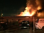 Fire damages Tampa auto repair shop