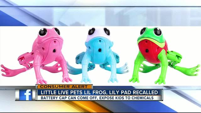 Moose Toys recalls Little Live Pets Lil Frog plastic toys due to…