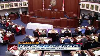FL's self-defense laws could face changes