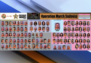 Polk detectives arrest 104 in prostitution sting