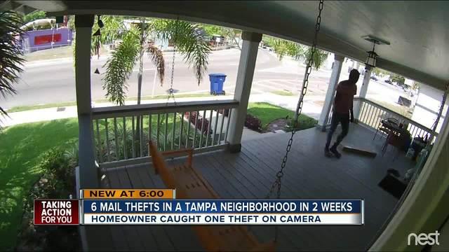Tampa homeowner captures brazen mail theft on surveillance camera