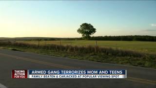 Family beaten, carjacked at stargazing spot