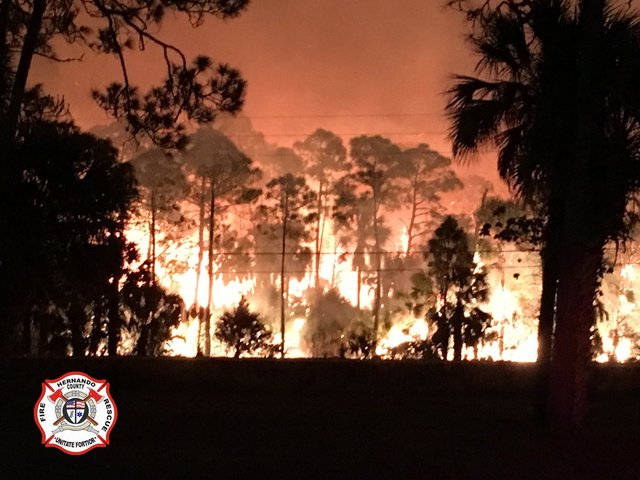 Florida brush fire grows to 1100 acres, 75 percent contained