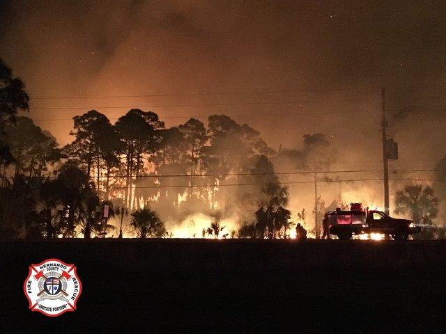 Wildfires scorch parts of Florida; gov. declares emergency
