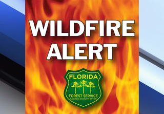Brush fire rages on in Hernando County