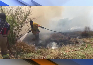 Crews respond to brush fire in Plant City