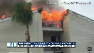 Firefighters battle blaze at Tampa apartment
