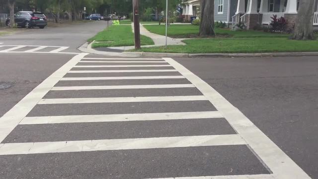 South Tampa neighborhood pushes for safer streets and gets new crosswalk…