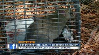 Woman trapped in home with rat infestation