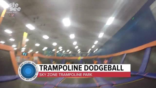 Dodgeball goes extreme on trampolines - Taste - See Tampa Bay