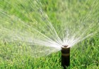Lawn watering returns to twice a week