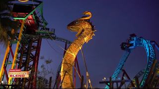 Summer Nights at Busch Gardens!