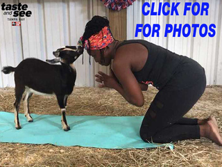 PHOTOS: Goat yoga at Hat Trick Ranch