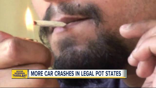 Study links legalized marijuana with increase in car crash claims