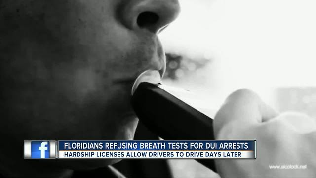 Florida-s drinking problem and the people who refuse to admit it