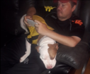 Family of disabled man looking for stolen dog