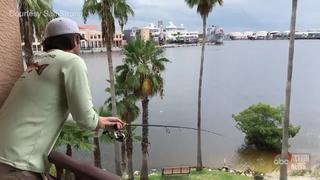 Man catches snook while fishing from balcony