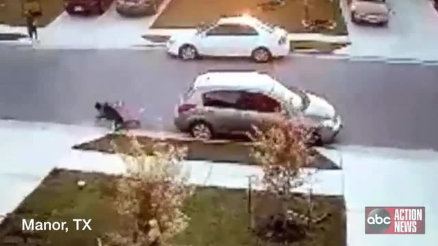 Texas dog attack of young boy caught on camera