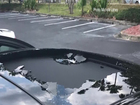 What causes sunroofs to shatter