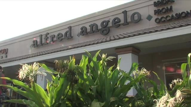 Alfred Angelo Bridal one of the largest retailers and manufacturers of bridal gowns closed its stores nationwide