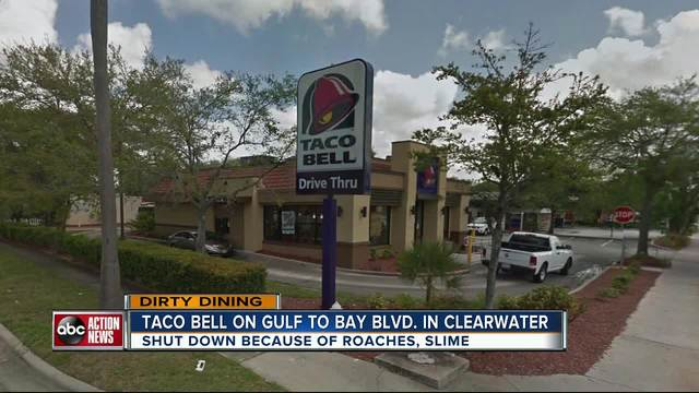 dirty dining: taco bell temporarily closed for almost 60 live and
