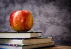FL principal asked teachers to do son's homework