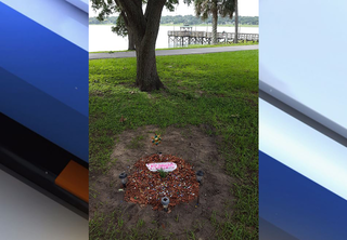 City asks owner to remove pet buried in park