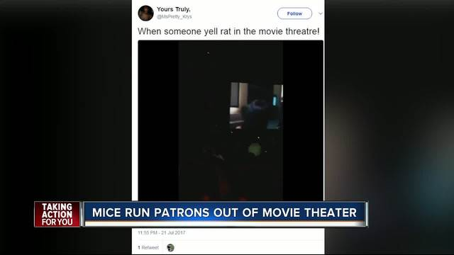 Moviegoers report rodents at Florida AMC theater over the weekend via…