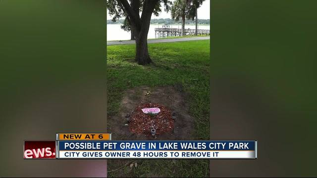 City gives owner 48 hours to remove what appears to be pet buried in public park