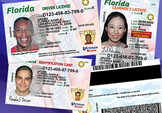 Florida's new driver's licenses and ID cards
