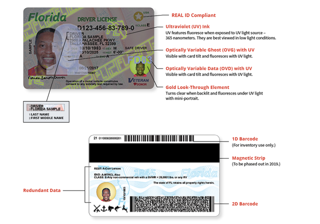 Florida driver 39 s licenses and id cards are getting a new for Florida motor vehicle license