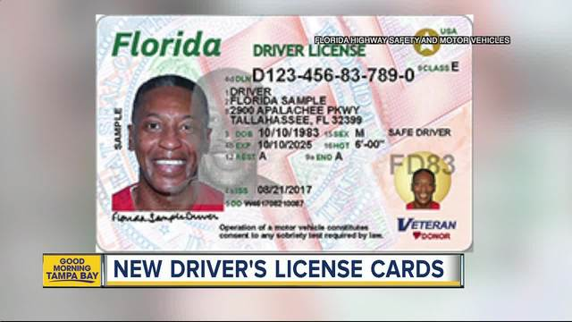 Florida Learners Permit >> Florida driver's licenses and identification cards getting new look - wptv.com
