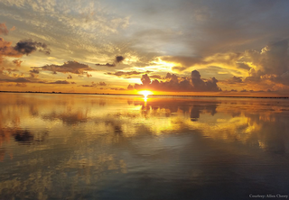 GALLERY: Best photos of Tampa Bay in July