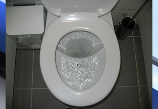 To flush or not to flush: Disposal dangers