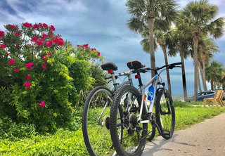 Bike thieves hit St. Pete hard