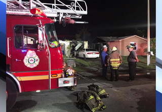 13 dogs killed, 1 person burned in explosion