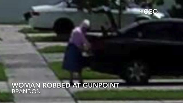 Suspects follow 86-year-old woman home- rob her - Digital Short
