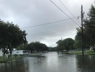 Photos: Irma damage scenes in Pinellas, Pasco