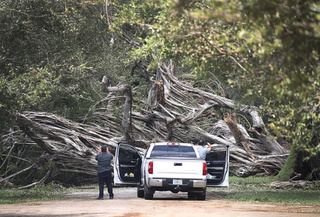 20 MUST-SEE PHOTOS   Irma damage throughout FL