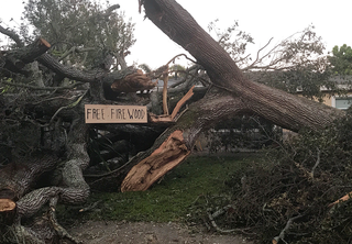 Hurricane Irma debris pick-up times