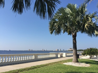 Construction project on Bayshore Blvd. begins