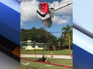 Paraglider crashes into power lines in St. Pete