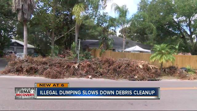 Illegal dumping slowing down pinellas debris pickup for Landscaping rocks pinellas county