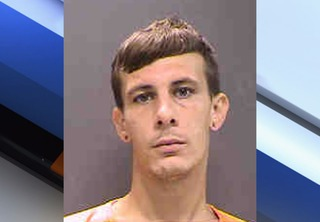 Sarasota man faces 12 years for child abuse