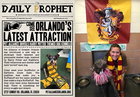 Shelter sorting animals by Harry Potter houses
