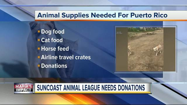 Suncoast Animal League in Palm Harbor needs donations to help homeless…
