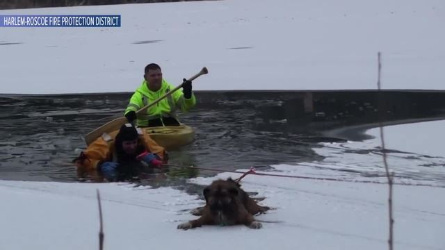 WATCH- Firefighter rescues dog that fell through ice on frozen lake