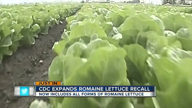 Romaine Lettuce: Don't Eat It!