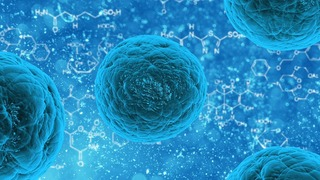 Stem cells: Lots of hype, but do they work?