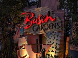 Celebratory gunfire injures man at Busch Gardens
